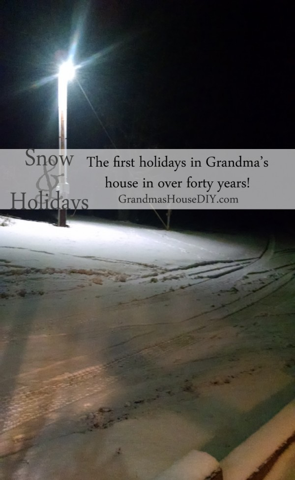 A full on snow storm and the first holidays celebrated in my Grandma's house in over forty years!