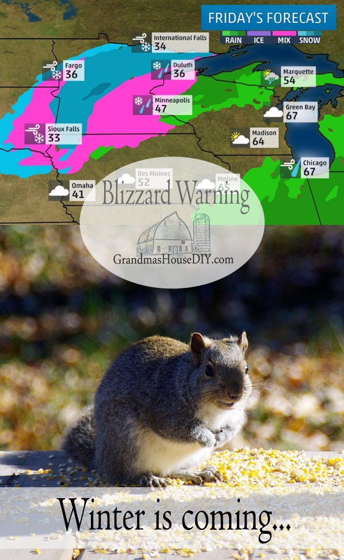 First snow storm of the year, major winter blizzard in northern Minnesota, feeding the squirrels corn and basement updates
