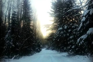 Very cold snowy road northern minnesota winter