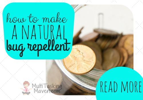 Natural and green recipes for those places around our homes that we all struggle with! Weed killer, mosquito repellent, surface spray, bug, degreaser