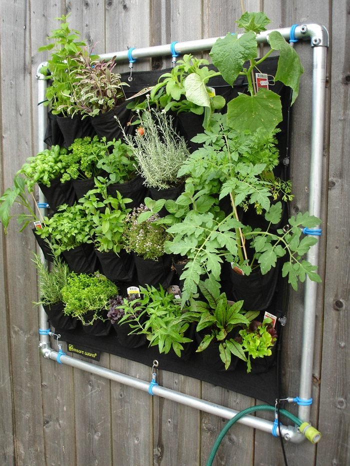 How To Make Your Own Vertical Garden On The Wall With Plants, Flowers,  Blooms