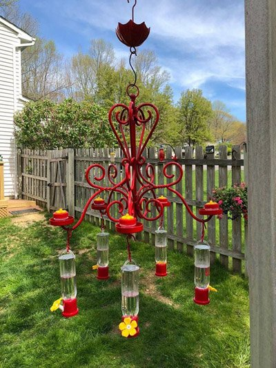 Hummingbird feeder planter shepherds hook extravaganza painted bright red with six humming bird feeders hanging from it. A large glass bowl off of a chandelier converted into a planter and solar light set in the middle of my large shepherds hook hummginbird feeder.