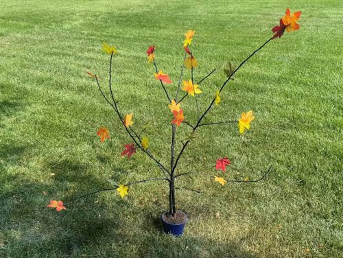 Chas from Chas' Crazy Creations – Awesome and Easy DIY Fall Tree Branch
