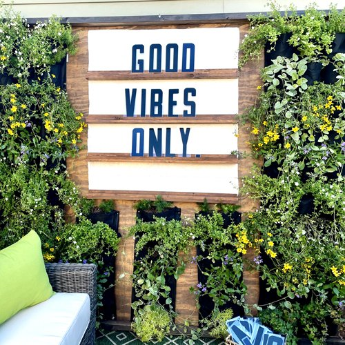 how i designed an easy diy outdoor living wall