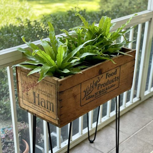 Vintage Crate to Modern Plant Stand