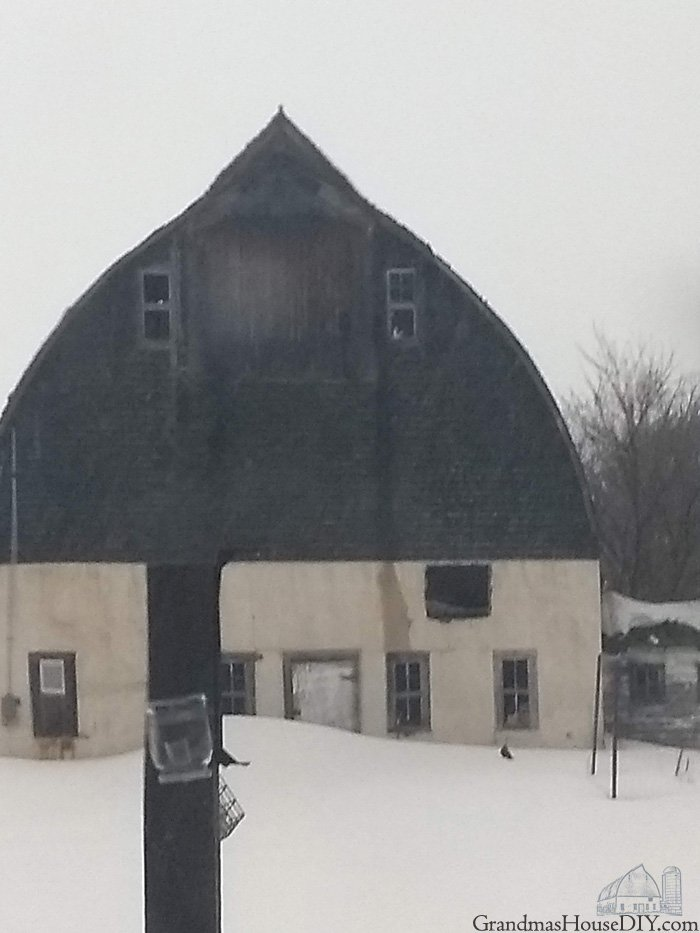 After the worst winter in weather records my ninety year old barn's back broke. I am so very sad and so very sorry to say that part of her went down.