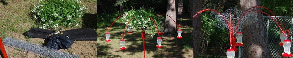 Custom outdoor planter made with chicken wire and landscape fabric and a long hanging plant over a shepherds hook hummingbird feeder carousal