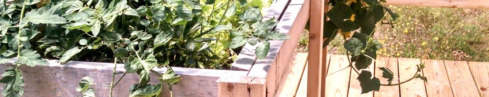 How to build a tall, easy to weed, garden planter out of 2x4s wood and steel for your deck or back yard, do it yourself, diy, wood working How to build a tall, easy to weed, garden planter out of 2x4s wood and steel for your deck or back yard, do it yourself, diy, wood working