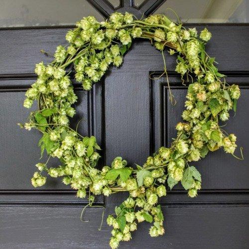 Fall Porch Decor With Hop Vines