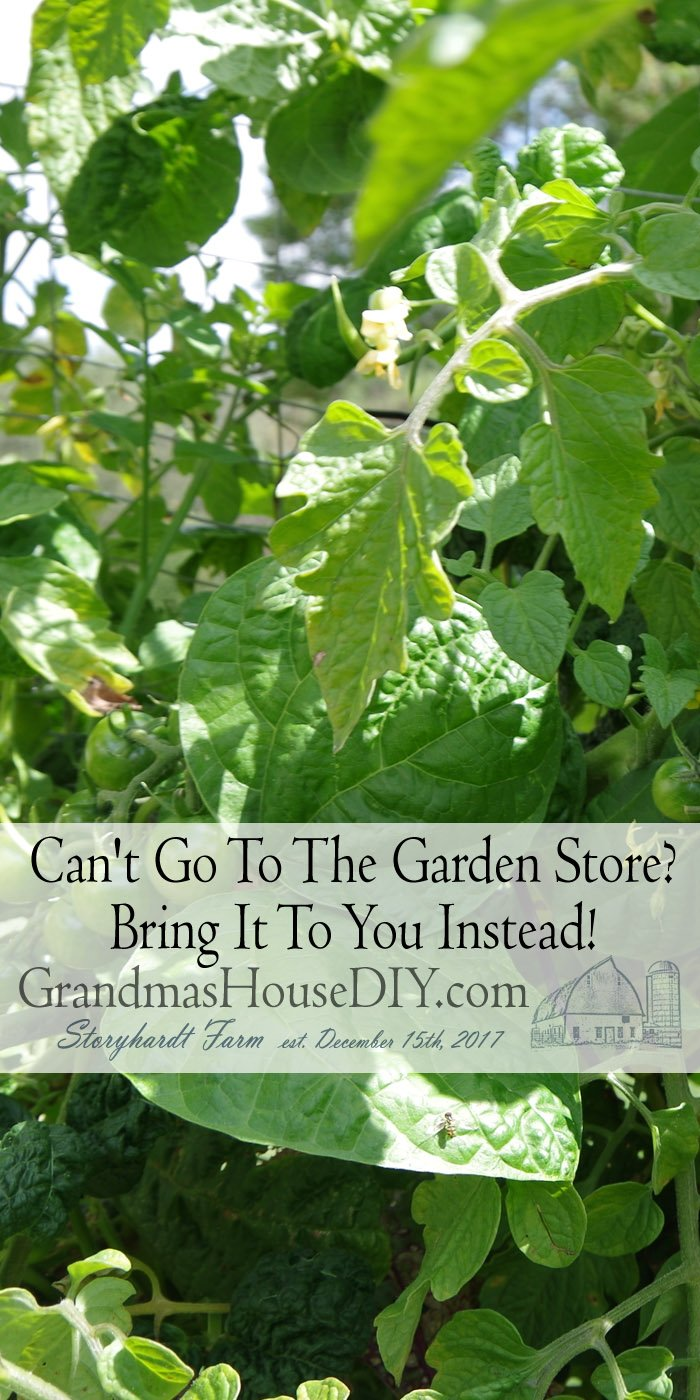 I think this year people will probably be spending more time in their gardens (and gardening) like never before with or without a garden store available
