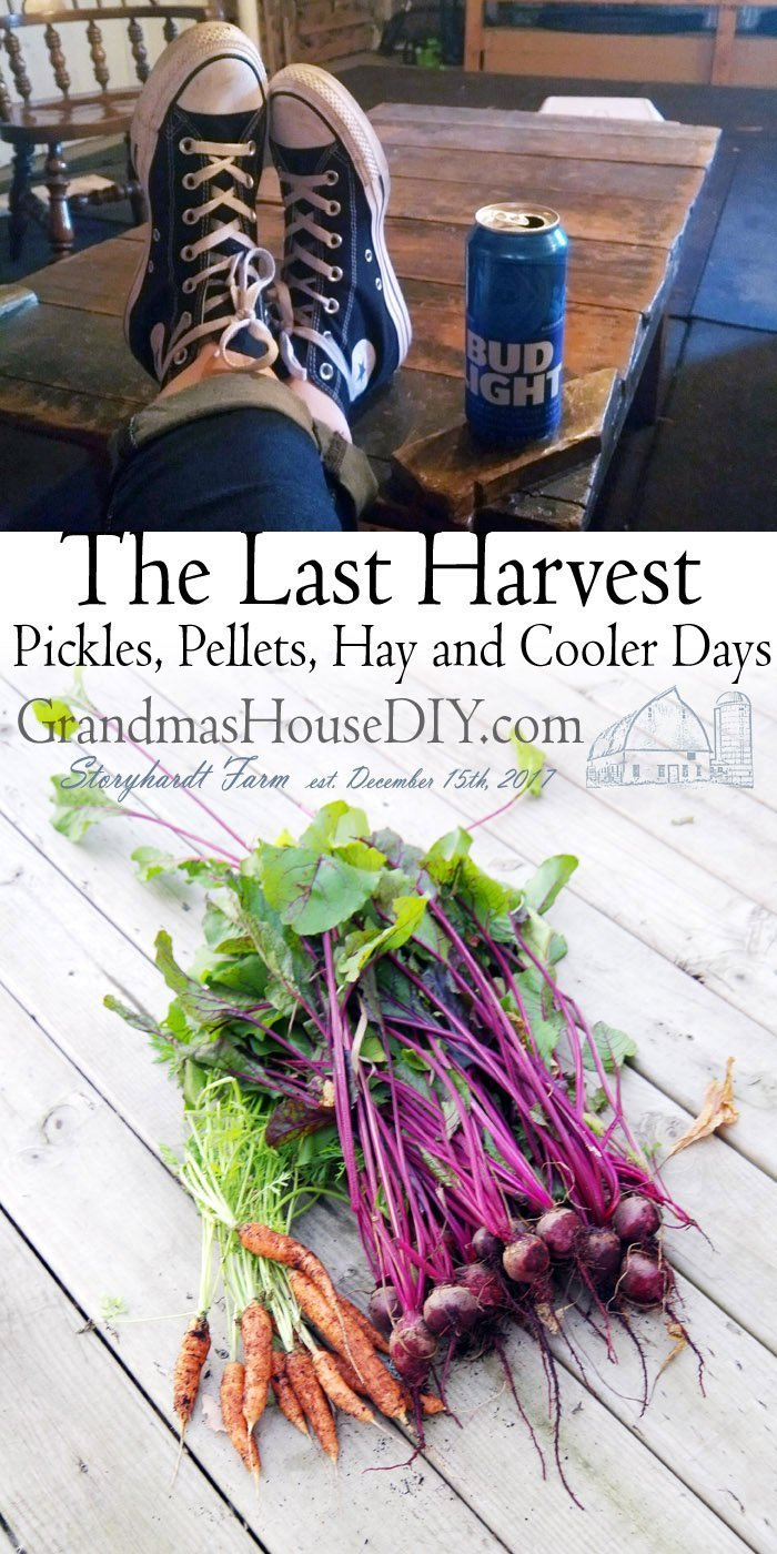 Saying goodbye to summer, embracing cooler days, harvest, pickle, harvesting the last of my garden and preparing for winter with hay and pellets