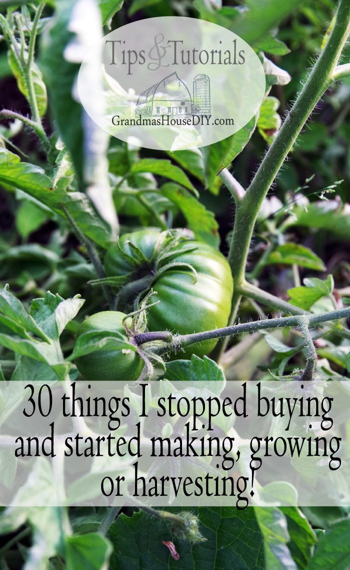 The 30 things we stopped buying in the store and now either harvest, do without, make ourselves or grow in our own garden, frugal living, cheaper, thrift