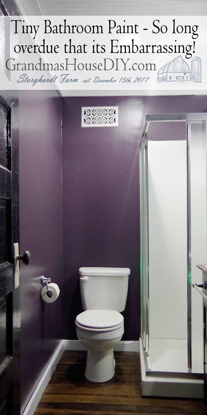 This tiny bathroom paint of mine has so many issues that I've just been ignoring it since I finished the renovation of this home and moved in 2015.