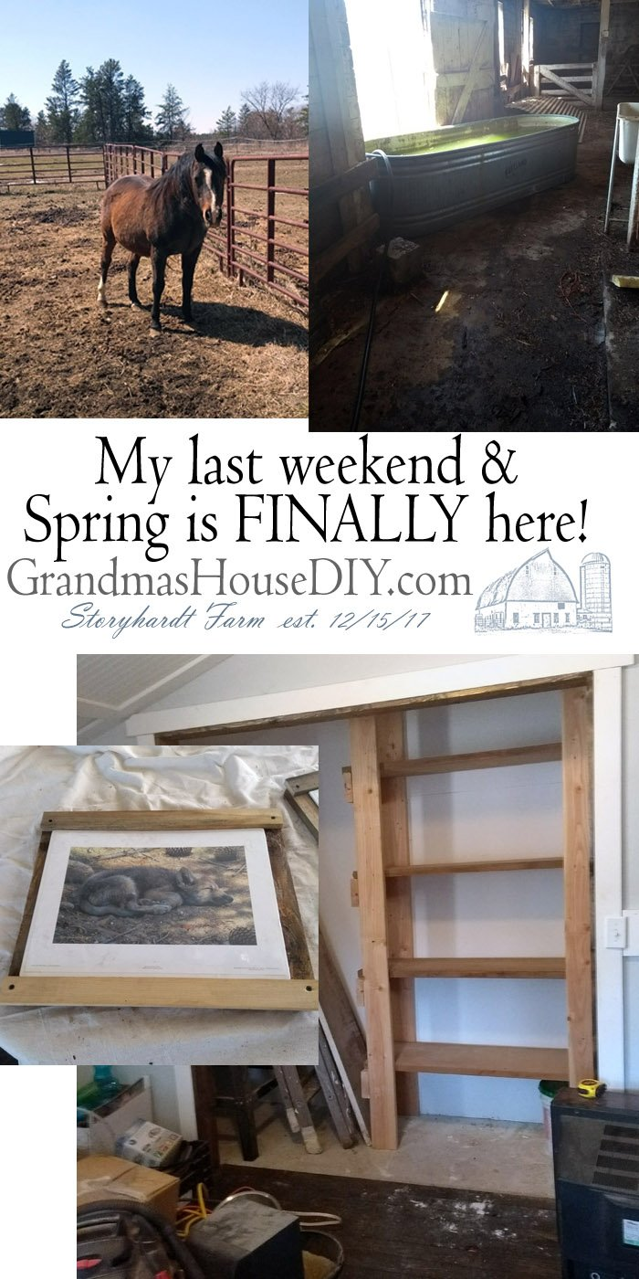 Spring is finally here: This weekend at Grandma's House! Moving my horses water tank from the pasture to the barn, moving shelves and more things from my basement to my new workshop. Tackling my big yard plan and reminding myself that nothing needs to be done right now, I am literally without deadlines.