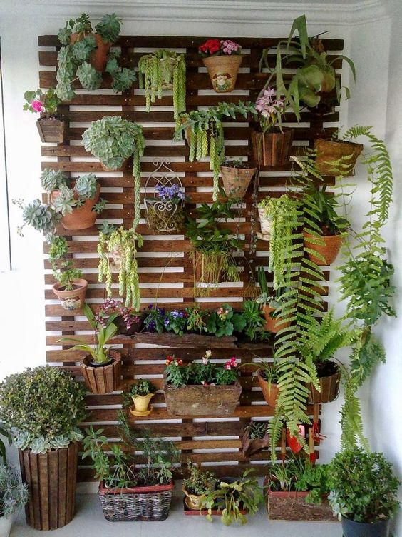 How to make your own vertical garden on the wall with plants, flowers, blooms, succulents, a great way to add greenery and life to your home or outside on your deck or patio. How to, DIY, do it yourself, build your own wall of plants easily!