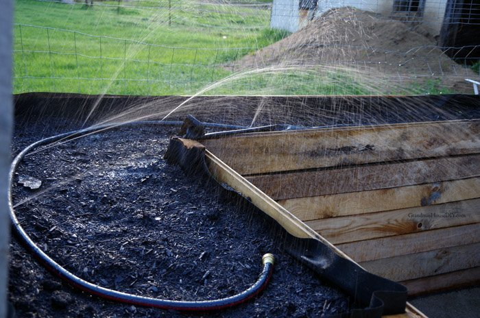Making DIY do it yourself irrigation for my vegetable garden raised beds and my perennial flower beds using old, leaky discarded hoses, practically free!